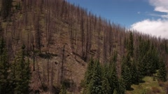 Aerial shot flying above mountain and trees after wildfire Stock Footage