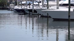 Luxury yachts and boats  docked in  harbor Stock Footage