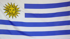 Slowmotion real textile Flag of Uruguay - stock footage