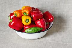 Ripe multi-colored vegetables lies in a basin Stock Photos