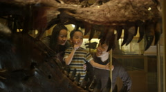 4K Family in natural history museum looking through glass at dinosaur skull Stock Footage