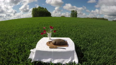 Country farmland landscape concept with bread on table, time lapse 4K Arkistovideo