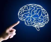 Human hand pointing with finger at brain icon Stock Photos