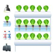 Hydroponics System Icon Set - stock illustration
