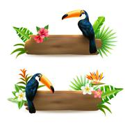 Toucan 2 Tropical Rainforest Banners - stock illustration