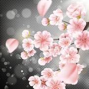 Cherry blossom, sakura flowers. EPS 10 - stock illustration
