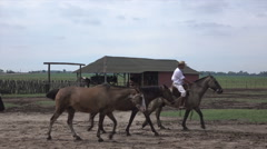 Gauchos lead horses on ranch in Argentina pampas area Stock Footage