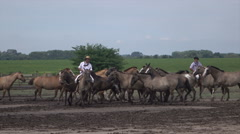 Gauchos demonstrate horsemanship with horses on ranch in Argentina pampas Stock Footage