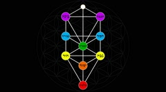 Kabbalah Tree of Life with Hebrew Text in a Color Spectrum on a Flower of Life - stock footage