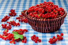 Redcurrant in wicker bowl on the table - stock photo