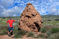 Giant red soil termitary termites nest in Australia - stock photo