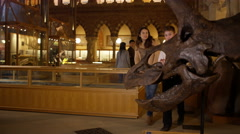 4K Mother & son in natural history museum looking at the skeleton of a dinosaur. Stock Footage