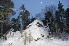Lapland forest in winter - stock photo