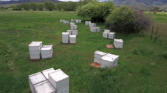 Aerial shot flying over the bee boxes in a field Stock Footage