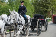 WASHINGTON D.C., USA - MAY, 2 2014 - US Army marine funeral at Arlington ceme Kuvituskuvat