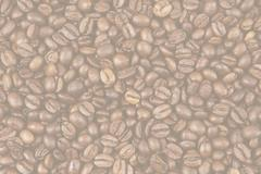 Closeup of faded coffee beans - stock photo