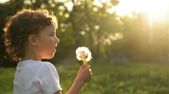 Boy blowing on dandelion beautiful sunset light - stock footage