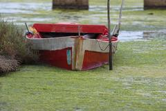 An old fishing boat in swamp in Sardinia, Italy Stock Photos