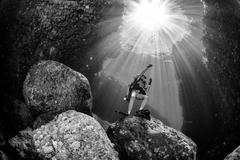 Backlight diver underwater coming to the deep ocean Stock Photos