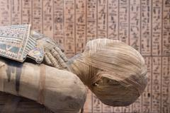 Egyptian mummy close up detail with hieroglyphs background Stock Photos