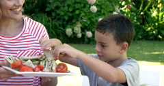 Portrait of happy family is eating in the garden Stock Footage