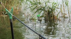 Bells on the fishing rod on background of water, reeds and algae, 4k Stock Footage