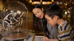 4K Mother & son in natural history museum looking at a skeleton inside glass jar - stock footage