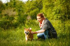 Girl stroking a dog Shiba Inu. - stock photo
