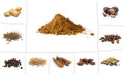 Pile of Garam Masala and Ingredients - stock photo