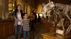 4K Mother & son looking at dinosaur skeleton in natural history museum - stock footage