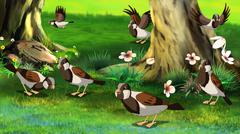 Flock of Sparrows .Feeding in the Forest - stock illustration