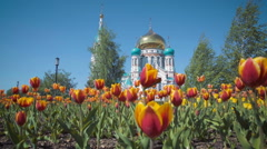 Uspensky Cathedral in Omsk on background of beautiful tulips Stock Footage