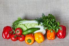 Cabbage, fennel, parsley, tomato, paprika, cucumber on a gray canvas - stock photo