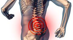 Lower Spine Pain in Human Body Transparent Design - stock illustration