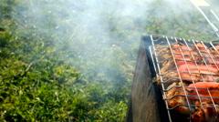 Skewer meat frying - stock footage