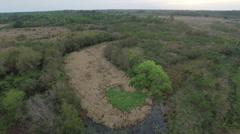 Woods Aerial Stock Footage