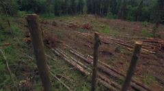 Aerial of Fresh Cut Timber in Piles at Clear Cutting for New Construction Stock Footage