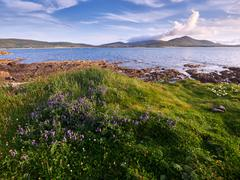 Coastline in Dingle, Ireland - stock photo