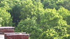 Aerial view on summer sunshower (heavy fall of rain). Stock Footage