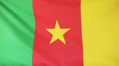 Textile flag of Cameroon Stock Footage
