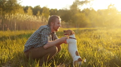 Man with a dog Jack Russell in the meadow at sunset Stock Footage