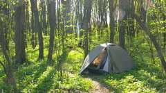 Tourist tent in spring forest. Morning time. High quality of the forest sound Stock Footage