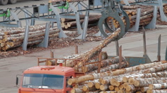 HEAVY EQUIPMENT TRUCKS LOADER AND PICKER Stock Footage