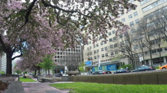 Toronto Rehabilitation Institute Hospital on University Avenue in Spring Stock Footage