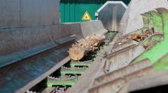 Lumber industry Conveyors of logs sorting machine - stock footage