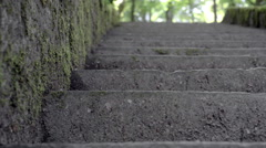 The ant creeps on sheet. Old stone stair in the forest. Stock Footage