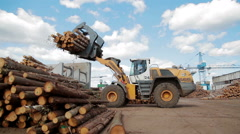 HEAVY EQUIPMENT TRUCK PICKER LUMBER FACTORY - stock footage