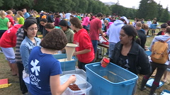 Students Volunteers pack charity food aid for homeless and starving in Africa Stock Footage