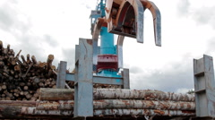 Modern lumber factory Crane load log trucks Stock Footage