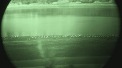 Bird Watching Night Vision Goggles - Newport Beach CA Stock Footage